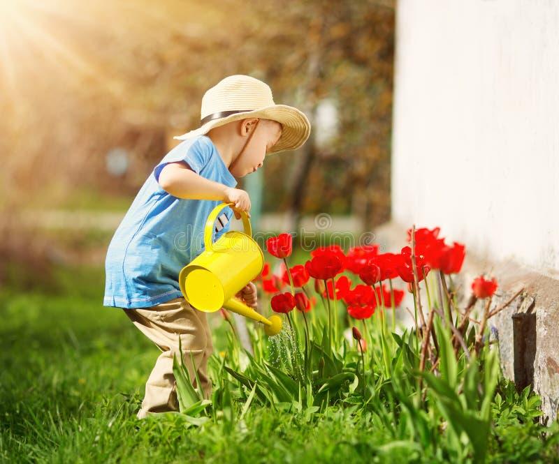 走在花床上的郁金香附近的小孩在美好的春日 库存照片