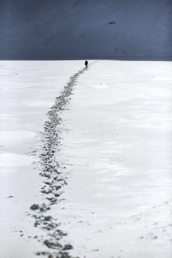 走在雪的一个人一条路在山 dragobrat横向山乌克兰冬天 库存图片