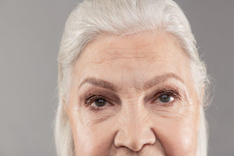 资深灰发的她的面孔的夫人陈列更高的零件 免版税库存照片