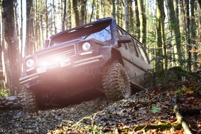 赛跑在秋天森林越野车或SUV的马达克服障碍 在秋天自然背景的越野种族 免版税图库摄影