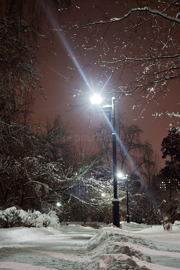 路灯到底和道路在雪在冬天公园 免版税库存照片