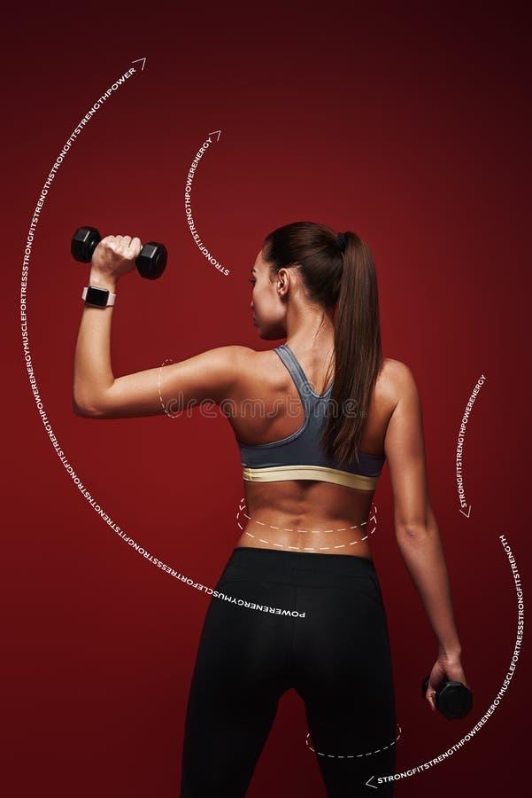 运动的秀丽 女运动员举行站立在红色背景的哑铃 图解图画 免版税图库摄影