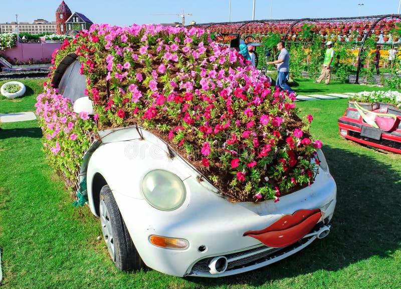 迪拜,阿拉伯联合酋长国- 2013年11月:乐趣用花做的动画片汽车在奇迹庭院在迪拜 阿拉伯酋长管辖区团结了 库存图片