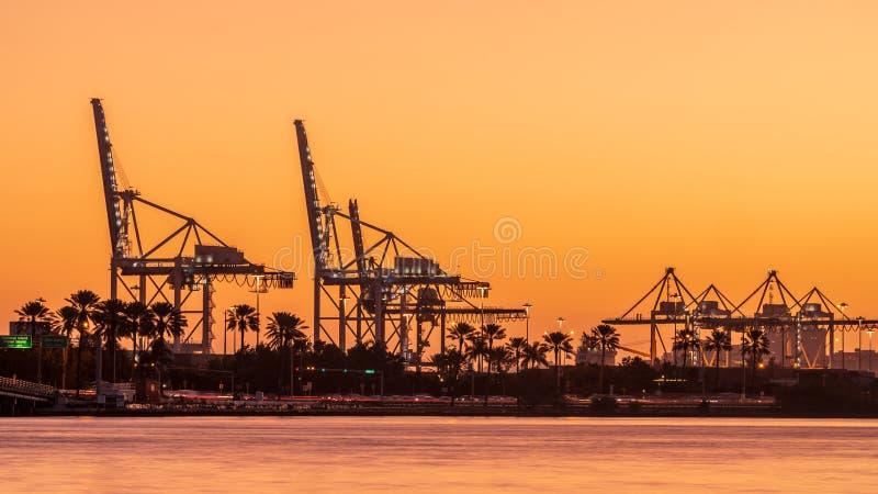 迈阿密在日落的港口地平线 免版税库存图片