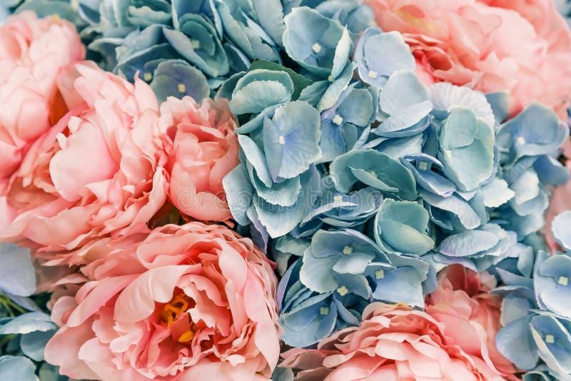 花卉与桃红色牡丹的春天欢乐背景 人为园林植物花 免版税库存照片