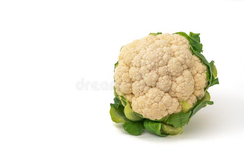花椰菜新查出的白色 库存图片