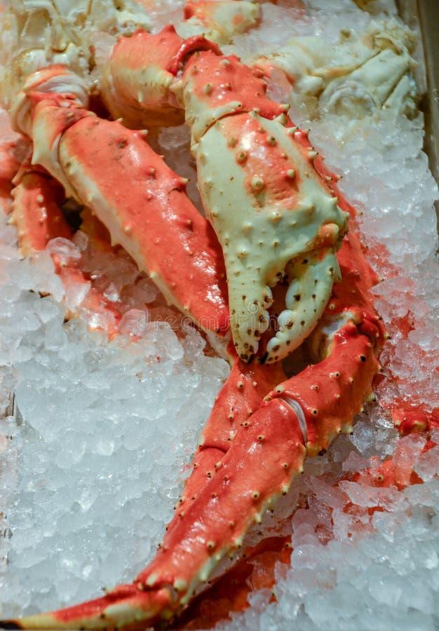 螃蟹冰国王行程 库存照片