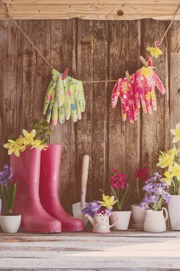 胶靴和春天花在木背景 免版税库存图片