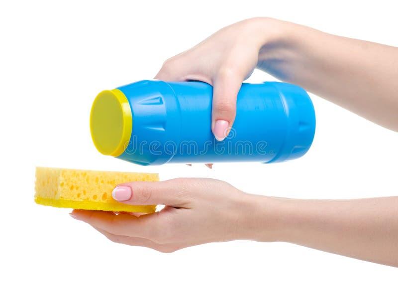 蓝色瓶洗涤剂粉末和干净的海绵在手中 免版税库存图片