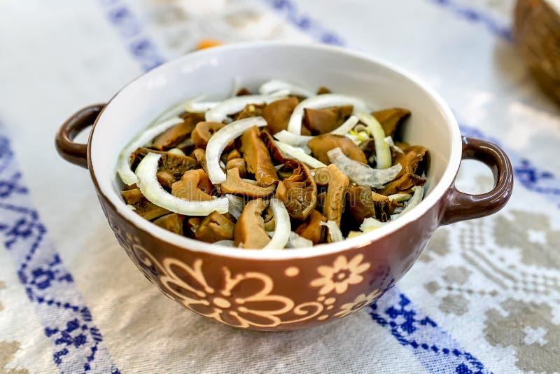 自创用卤汁泡的蘑菇 有机食品 库存图片