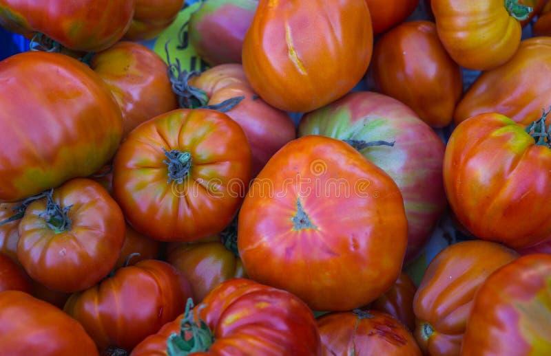 自温室种植的成熟有机蕃茄,收集在箱子 库存照片