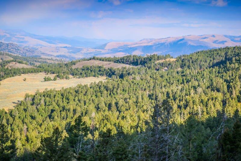 自然一个美好的俯视的看法在黄石国家公园,怀俄明 免版税库存图片