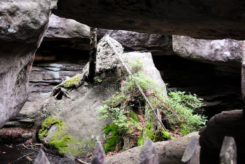 自然公园 不正确岩石波兰 免版税图库摄影