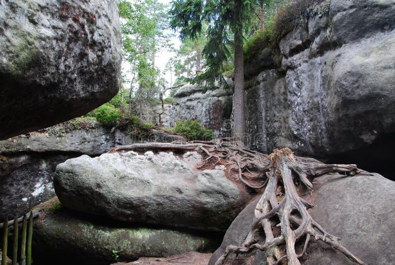 自然公园 不正确岩石波兰 库存照片