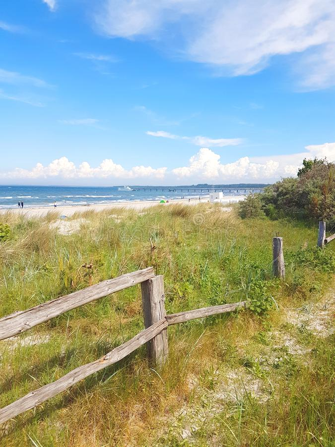 自然沙丘海滩区域和篱芭 免版税库存图片