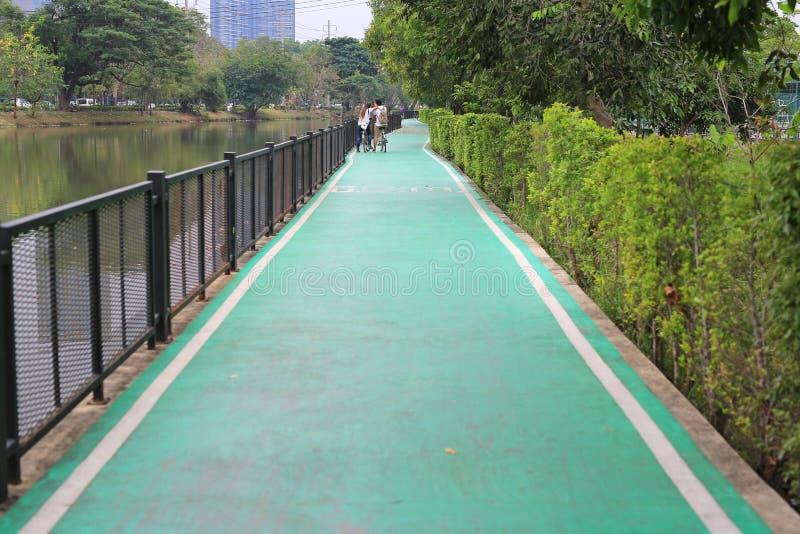 自行车道一条绿色路在自然公园的 库存照片