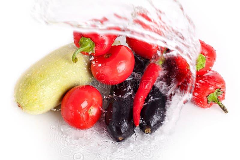 蕃茄,红色甜椒,炽热辣椒,紫罗兰色茄子,在凉水喷气机的绿色夏南瓜  免版税库存图片