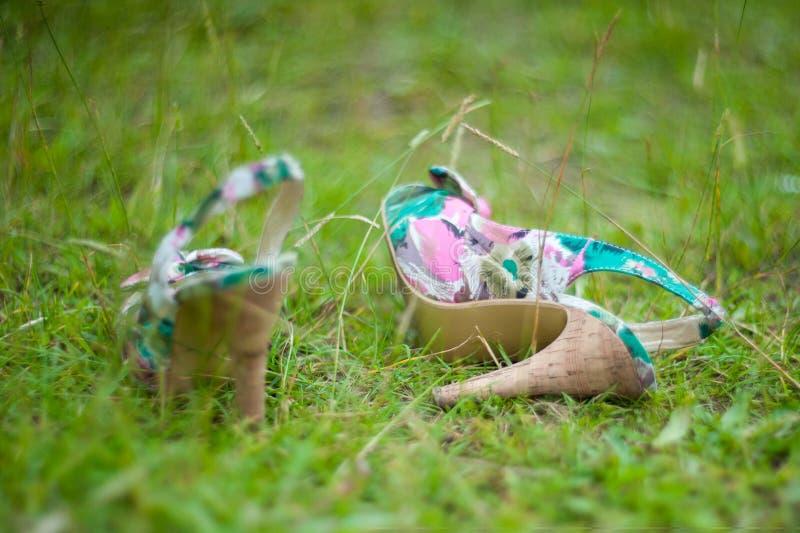 色的凉鞋在绿草说谎 库存图片