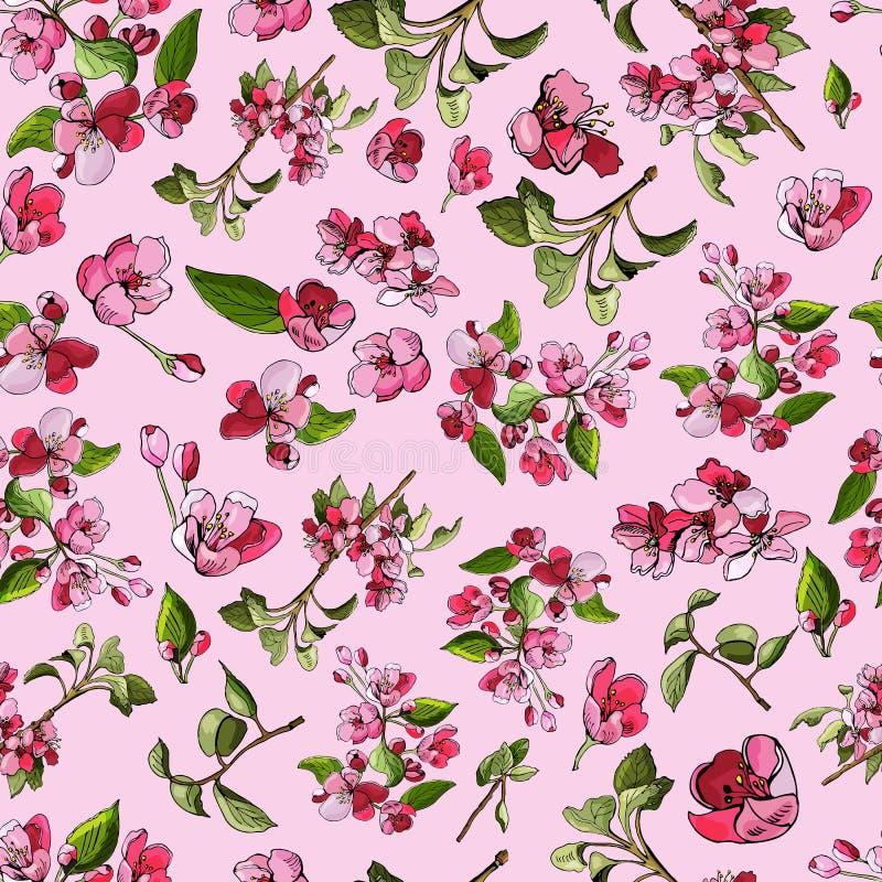 苹果树和花进展的桃红色分支的无缝的样式  罗盘星座花手拉的色的剪影  库存照片