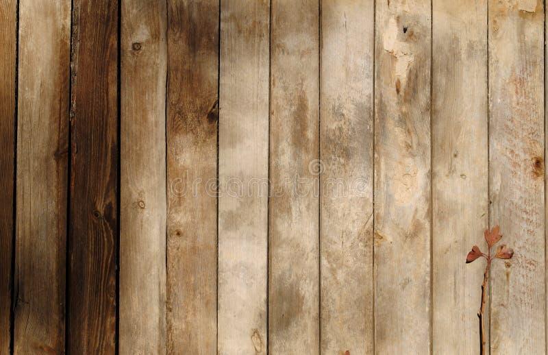 老木篱芭的纹理 免版税库存图片