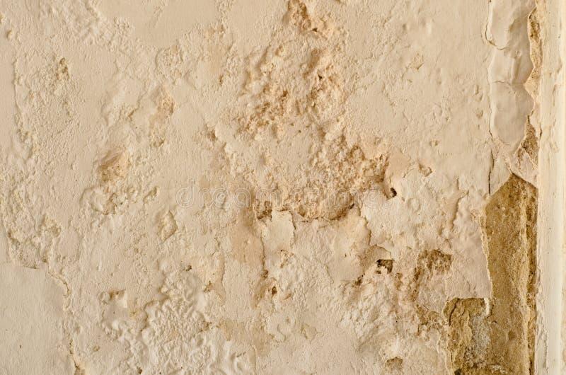 老白色损坏的被风化的砖墙纹理准备好您的建筑设计 库存图片