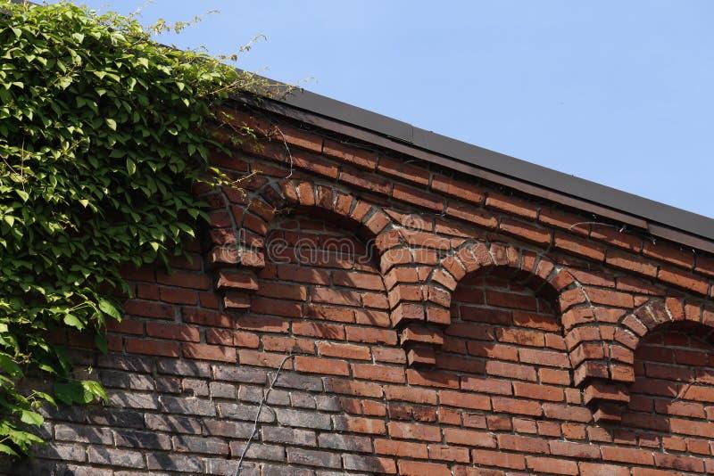 老砖工厂墙壁和Roofline -曲拱和常春藤 免版税图库摄影