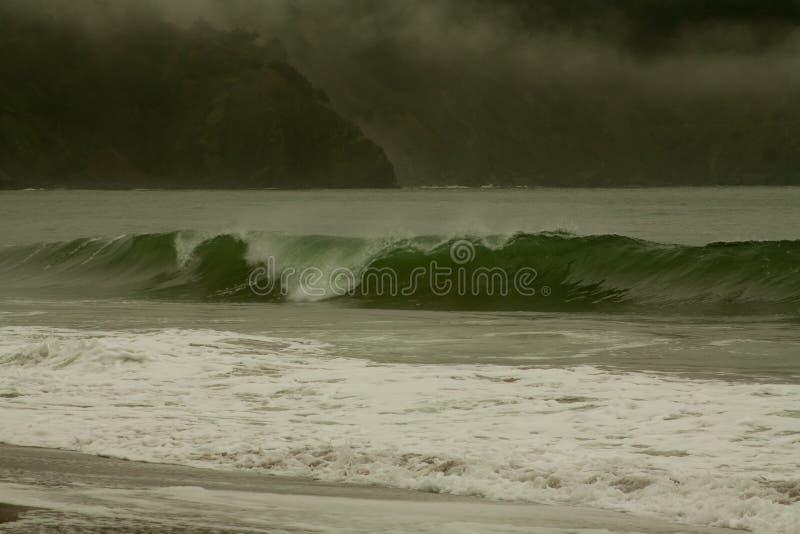 贝克海滩SF身体冲浪的完善的波浪 皇族释放例证