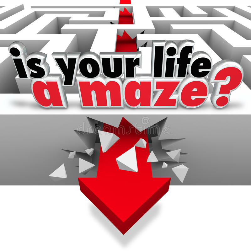 È la vostra vita un Maze Directionless Need Help Guidance illustrazione vettoriale
