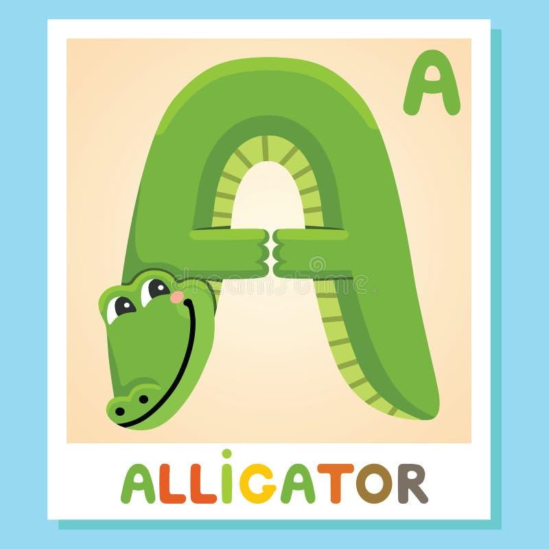 A è per l'alligatore Segni A con lettere Alligatore Alfabeto animale illustrazione vettoriale