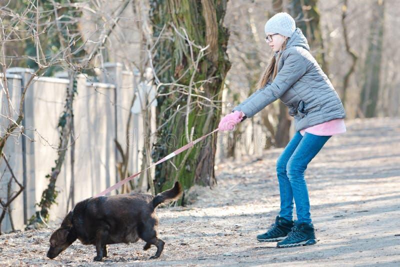 遛狗的青少年的女孩-狗拉扯 免版税库存图片