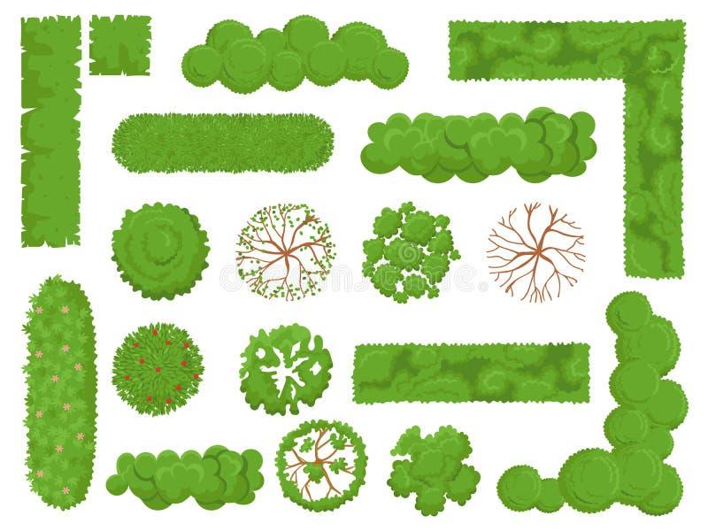 顶视图树和灌木 林木、绿色公园灌木和植物地图元素看从被设置的被隔绝的传染媒介上 库存例证