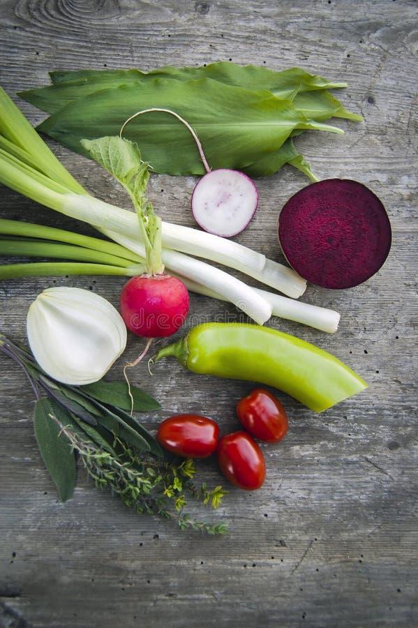 顶面射击,关闭新近地收获五颜六色的年轻的春天,与拷贝空间的有机,嘎吱咬嚼,水多的新鲜蔬菜在土气 库存照片