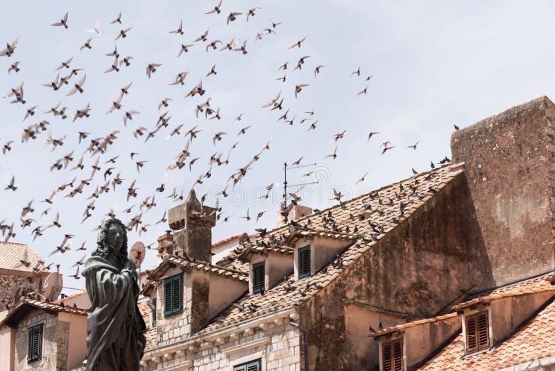 飞行在老中世纪城市的屋顶的浅兰的天空的鸽子群  在前景是雕象 免版税库存照片