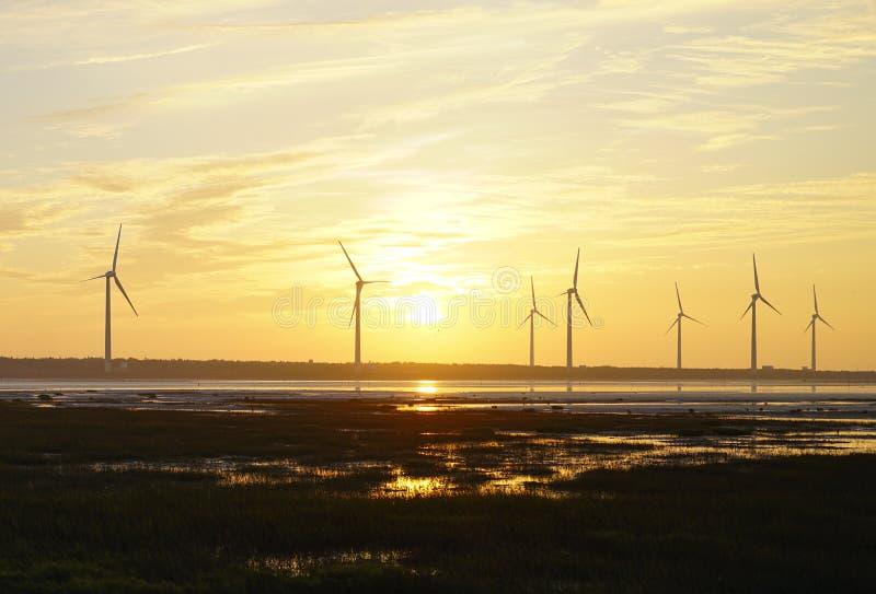 风能概念:风力场在台湾 库存图片