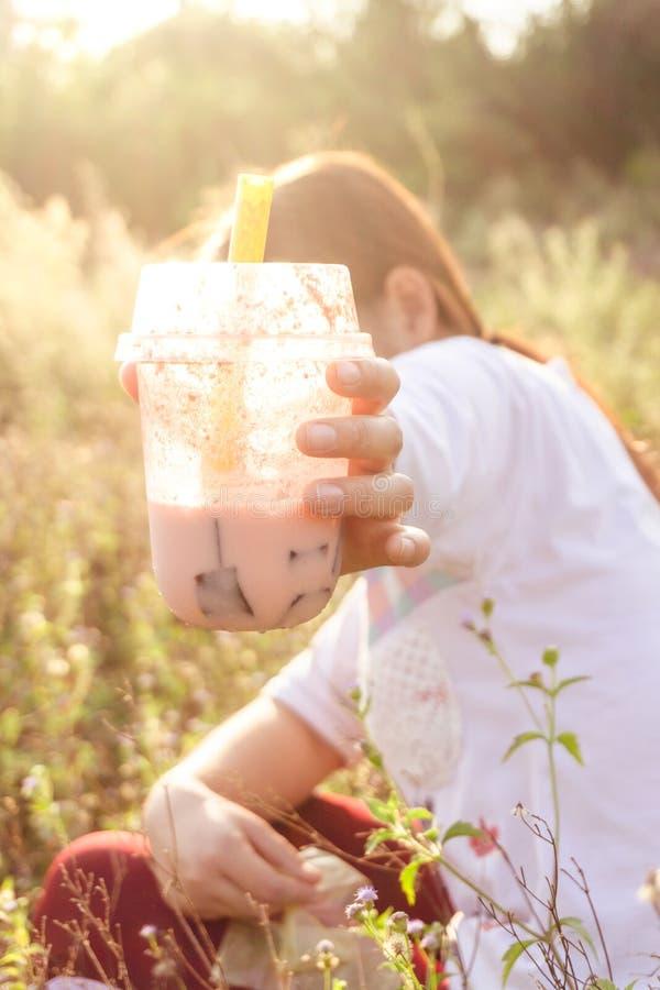 饮料Boba茶在草原,日落光 库存图片