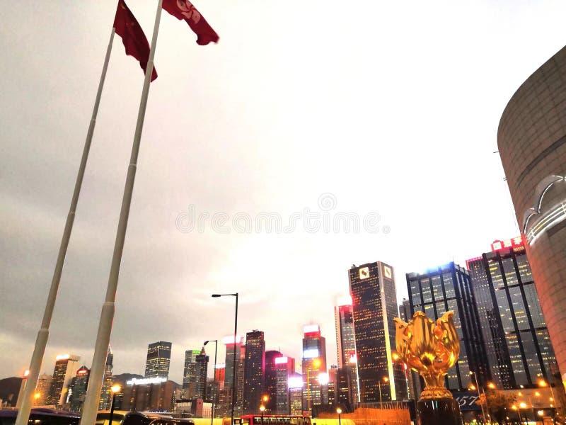 """香港 é ‡ 'ç"""" """"è  † å ¹ ¿ 场 goldenes Bauhinia-Quadrat, Hong Kong lizenzfreie stockfotos"""