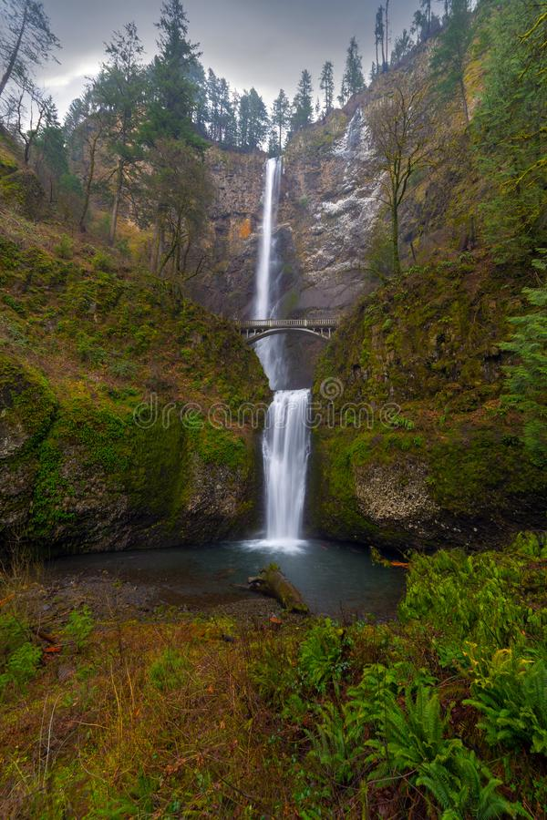 马特诺玛瀑布在哥伦比亚河峡谷波特兰或美国 免版税库存照片