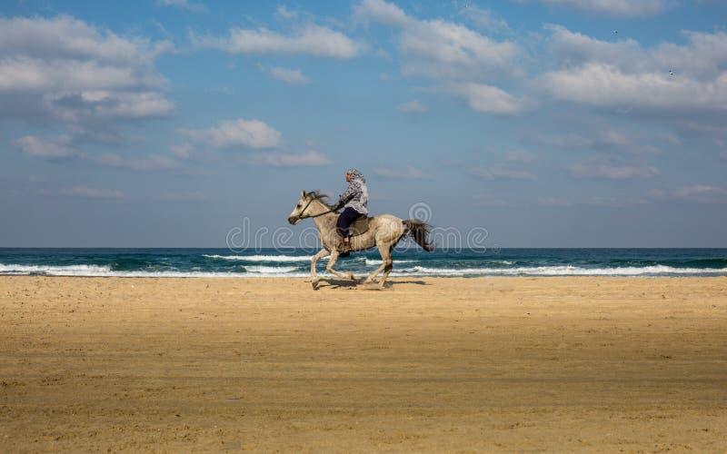 骑马的一个人在海滩 免版税库存图片