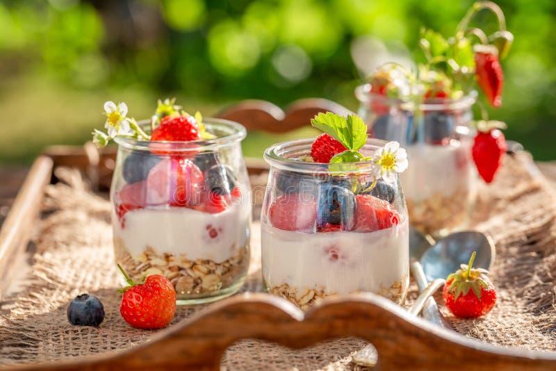 鲜美格兰诺拉麦片用莓果和酸奶在瓶子 免版税库存图片