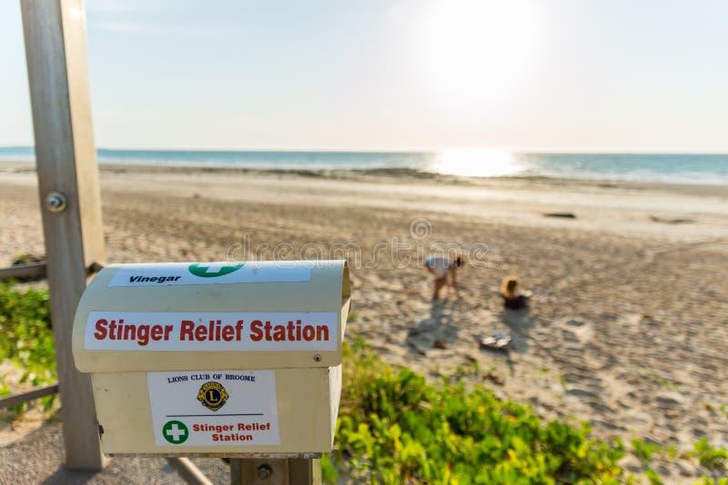 鳄鱼和有刺的动物是您也许遇到在缆绳海滩的某些危险 图库摄影