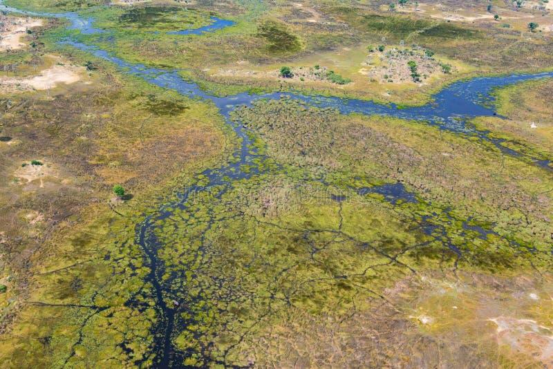 鸟瞰图奥卡万戈三角洲风景,沼泽,草原 免版税图库摄影