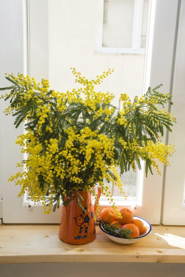 黄色含羞草花束在橙色茶壶在木窗台和普通话茶碟的在一个白色窗口背景特写镜头, 库存照片