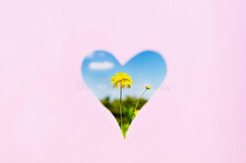 黄色花和天空蔚蓝在心形 淡色背景,拷贝空间 爱夏天概念 免版税图库摄影