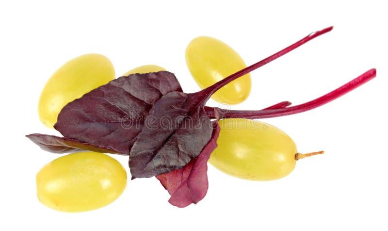 黄色葡萄莓果和在白色背景隔绝的新鲜的年轻唐莴苣红色叶子 库存照片