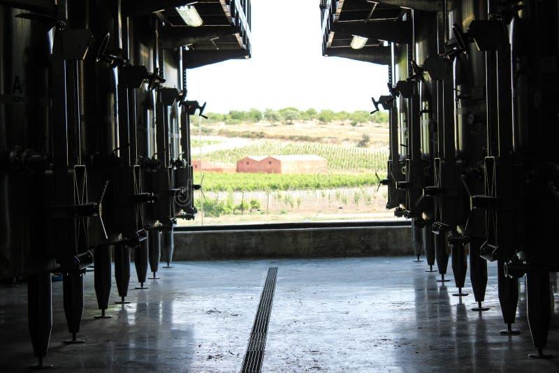 Één dag in wijnmakerij royalty-vrije stock afbeeldingen