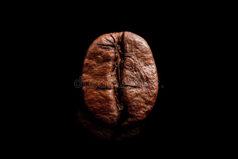 Één die koffieboon op zuivere zwarte achtergrond wordt geïsoleerd De grote macro zwarte espresso van de korrelkoffie Donkere gero royalty-vrije stock foto