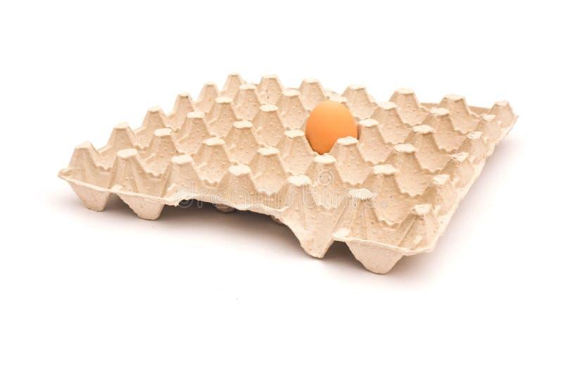 één ei dat op eidoos ligt die op witte achtergrond wordt geïsoleerd stock afbeelding