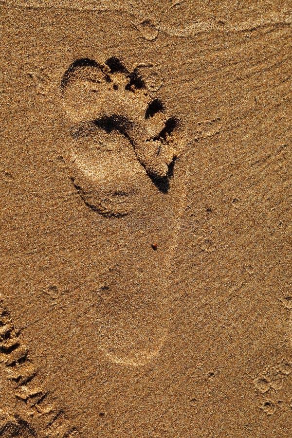 ??n enkele die voetafdruk in het zand op het strand wordt gestempeld Voetafdruk op het zandstrand De achtergrond van de textuur stock foto