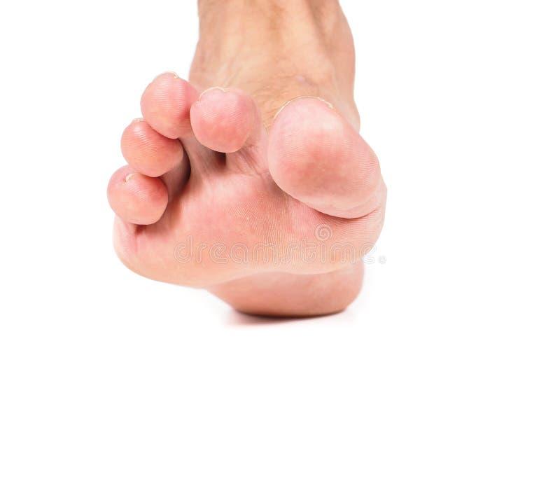 Één enkele malefoot die naar wit stappen stock afbeelding