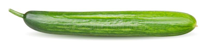 Één gehele die komkommer op witte achtergrond met het knippen van weg wordt geïsoleerd royalty-vrije stock foto's